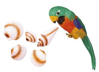Tropische Decoratie