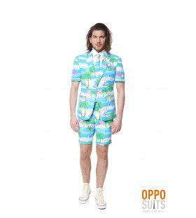 Summer Festival Miami Flaminguy Opposuits Man Kostuum