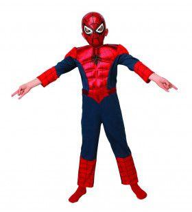 Spider-Man Metallic Deluxe Superheld Kind Kostuum