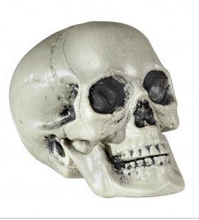Halloween Deco Schedel Van Pvc 21 Centimeter