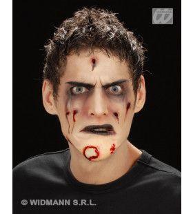 Zombie Kin, Professioneel