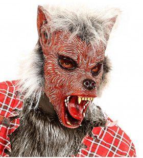 Sprookjes Kindermasker Weerwolf Met Haar