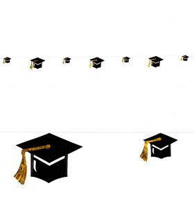Universiteit Slinger Afgestudeerde