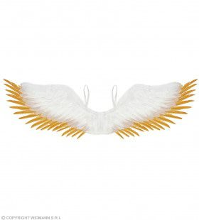 Wit Gevederde Engelen Vleugels Met Goud 100 X 25 Centimeter