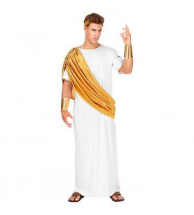Veni Vidi Vici Caesar Romeinse Keizer Man Kostuum