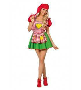 Meest Populaire Kabouter Van Het Bos Vrouw Kostuum
